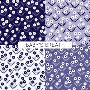 BABY'S BREATH-07